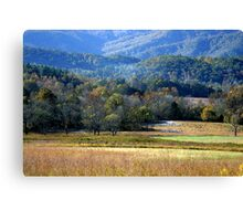 Hint Of Fall Canvas Print