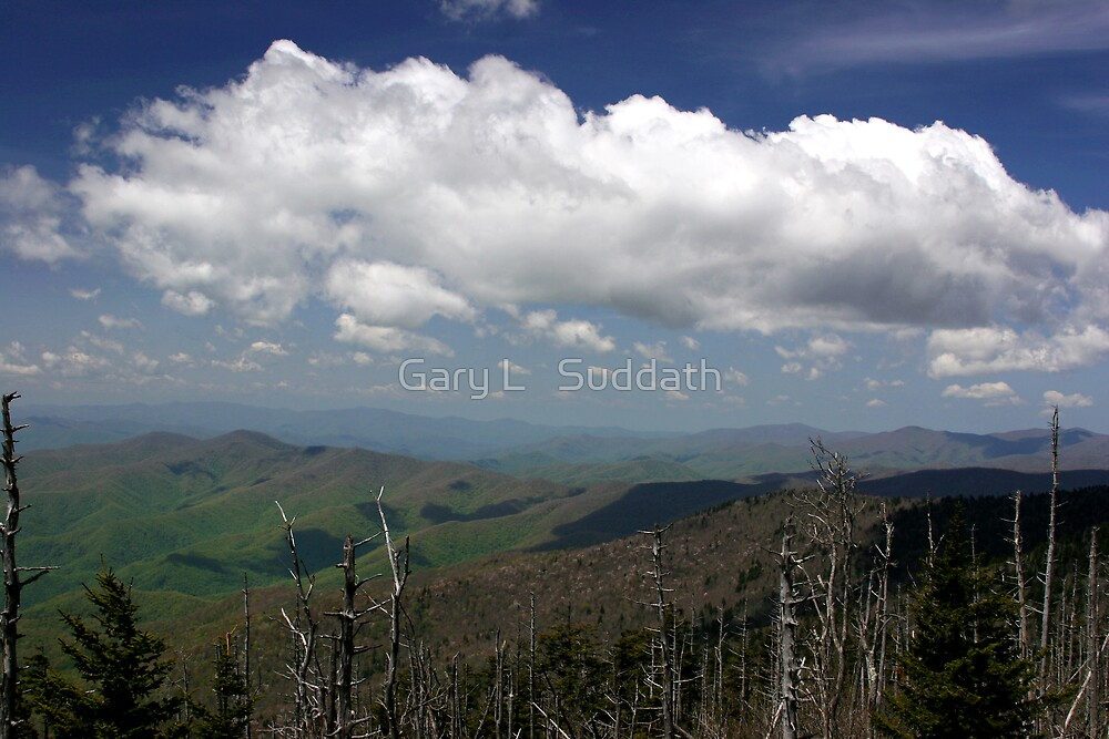Great Smoky Mountains II by Gary L   Suddath
