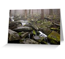 Foggy Mountain Creek Greeting Card