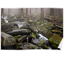 Foggy Mountain Creek Poster