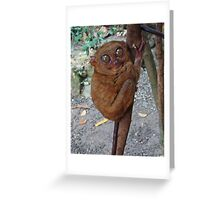 Tarsier Greeting Card