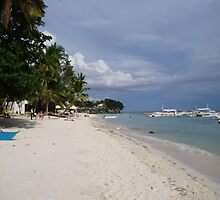 Tropical Beach by Robert Phelps