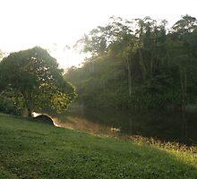 Costa Rica 03 by Petula
