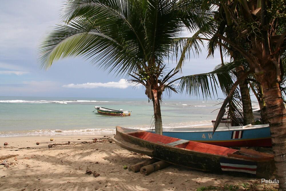 Costa Rica 04 by Petula
