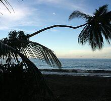 Costa Rica 06 by Petula