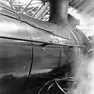 Steam at Southern Cross by spike