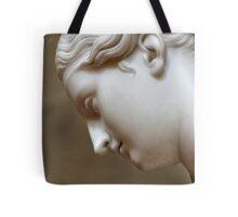Classical Contemplation Tote Bag