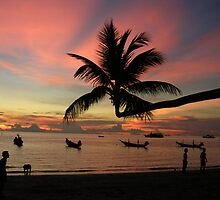 Koh Tao by David Spencer