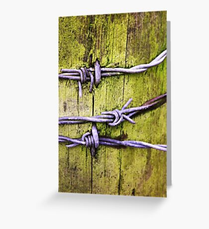 Barbed Wire Post Abstract Fine Art Photography Greeting Card