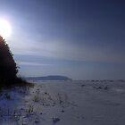 Desolate Winter Lake by Timothy  Ruf