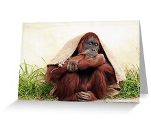 Taking shelter  Greeting Card