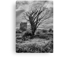 Irish skeletons Canvas Print