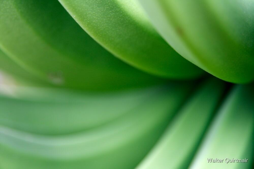 Banana by Walter Quirtmair