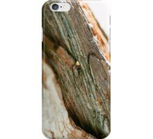 Aesthetic Tree Trunk iPhone Case/Skin