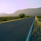 Park Road - Big Bend National Park by cfu123
