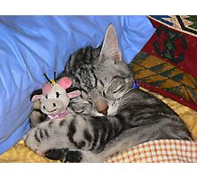 Cuddle Time Photographic Print