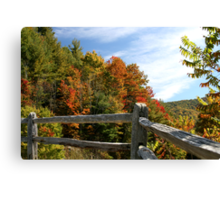 Autumns Splendor  Canvas Print