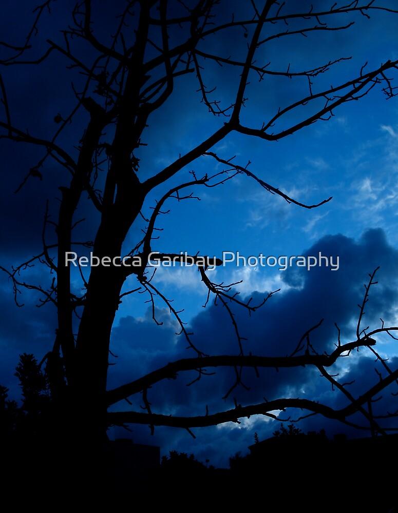 Bare Dark by Rebecca Garibay Photography