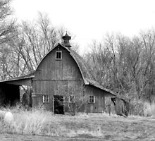 Vintage Barn in Black & White by Nadya Johnson