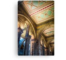 A ceiling at the Natural History Museum, London, England Canvas Print