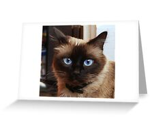 BLU EYES Greeting Card