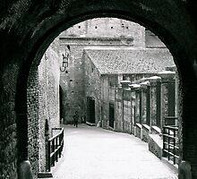 Verona Castle by robmackinnon