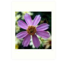 Little Purple Flower Art Print