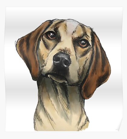 Hound with Inquisitive Look Rendering Poster