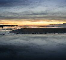 Mornings Tide by Moth
