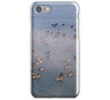 Ducks in Frozen Water iPhone Case/Skin