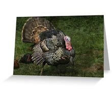 Prince of poultry Greeting Card