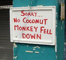 poor monkey! by MichaelA