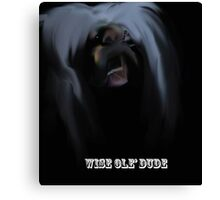 Wise Ole' Dude Canvas Print