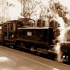Puffing Billy by Michael  Bermingham