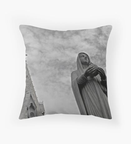 Notre Dame Cathedral, Ho Chi Minh City Throw Pillow