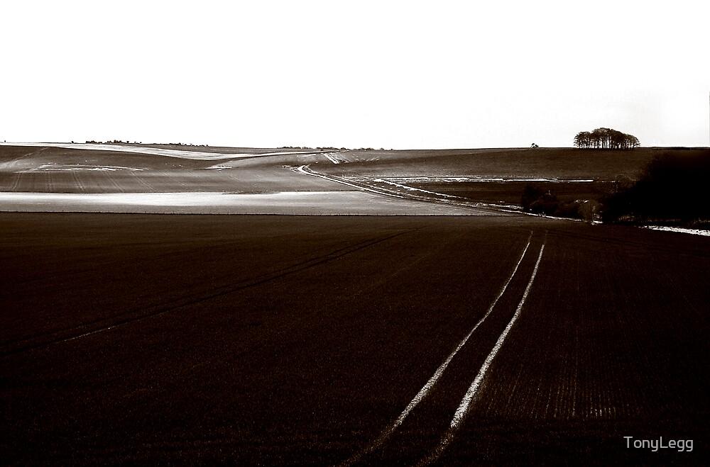 Salisbury Plane by TonyLegg