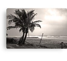 Lonely Palms Canvas Print