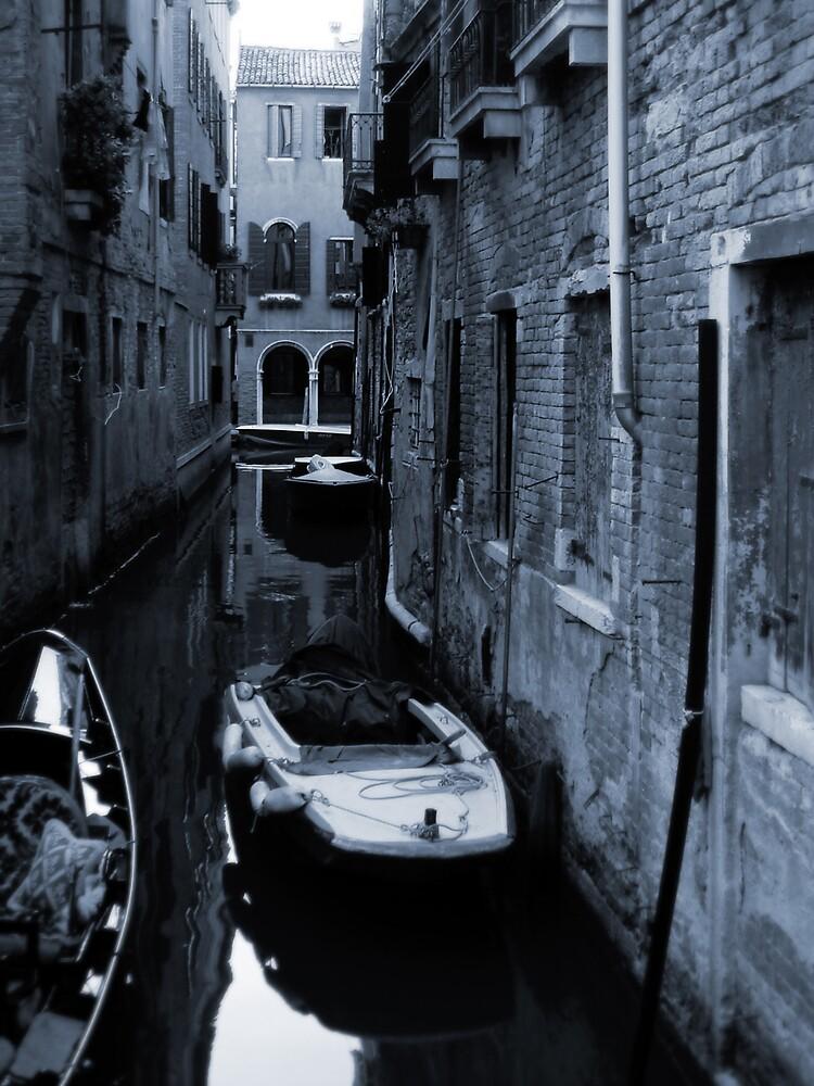 Venice by MichaelA