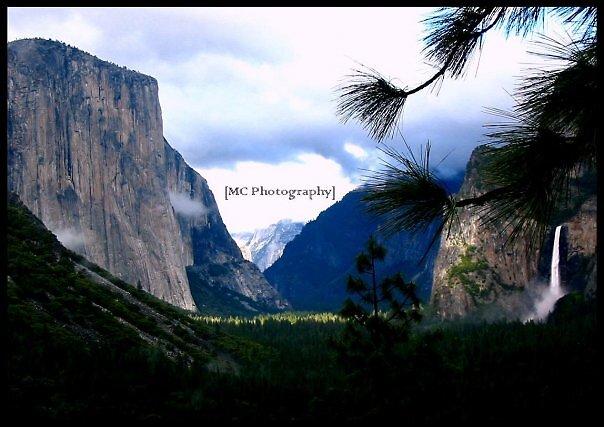 Yosemite by Melissa  Carroll