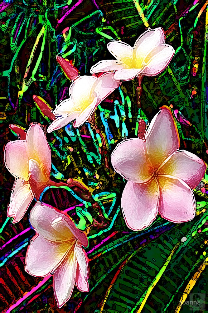 Tropical Frangipani by goanna
