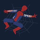 Anatomy of a Spider by byway