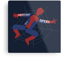 Anatomy of a Spider Metal Print