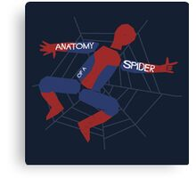 Anatomy of a Spider Canvas Print