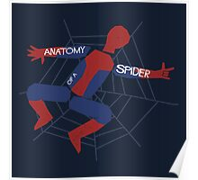 Anatomy of a Spider Poster