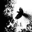 crow flight by arteology