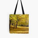 Tote #165 by Shulie1