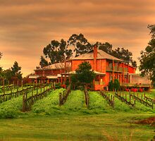 winery by alistair mcbride