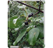 Berries and Water iPad Case/Skin