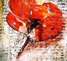 The Poppy Journals...Words in Music by © Janis Zroback