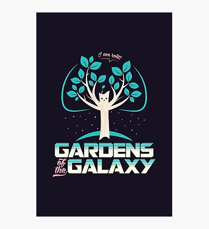 Gardens Of The Galaxy Photographic Print